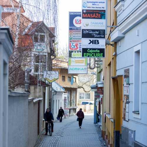Pohľad na vstup do budovy na Mlynskej ulici zo Štefánikovej ulice